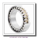 1.772 Inch | 45 Millimeter x 3.937 Inch | 100 Millimeter x 0.984 Inch | 25 Millimeter  LINK BELT MR1309TV  Cylindrical Roller Bearings