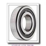 2.337 Inch | 59.362 Millimeter x 3.939 Inch | 100.046 Millimeter x 0.984 Inch | 25 Millimeter  LINK BELT M1309EAX  Cylindrical Roller Bearings