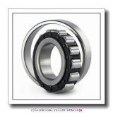 4.764 Inch | 121.006 Millimeter x 7.087 Inch | 180 Millimeter x 1.339 Inch | 34 Millimeter  LINK BELT M1220UV  Cylindrical Roller Bearings